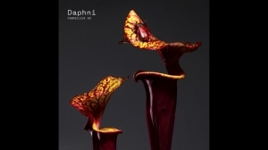 Daphni - Dissolve